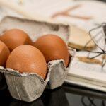 健康的な体作りにタンパク質はハズせない!